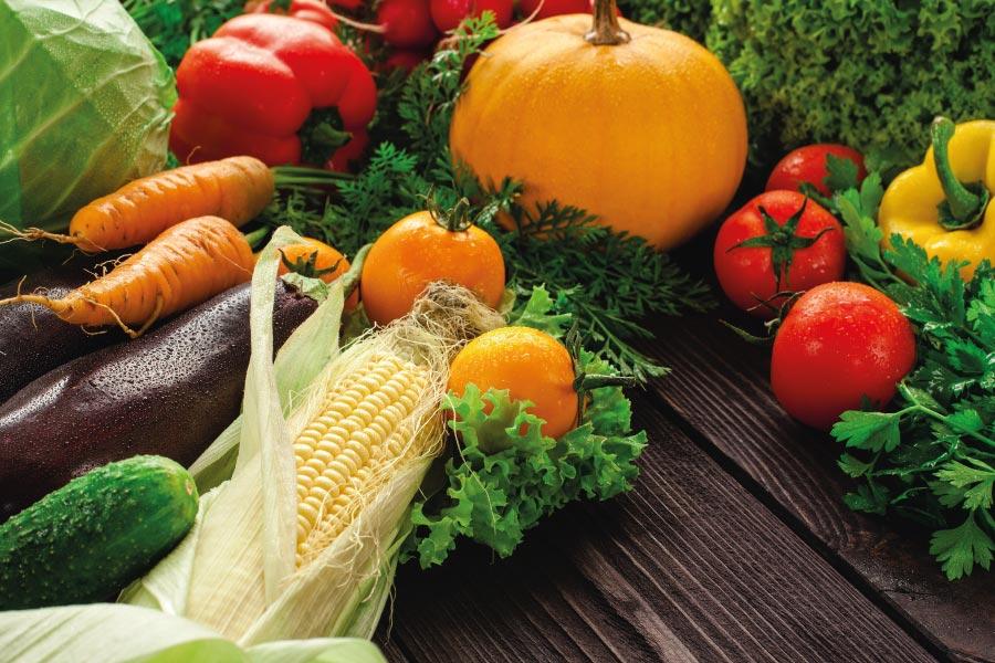 verduras nutricion